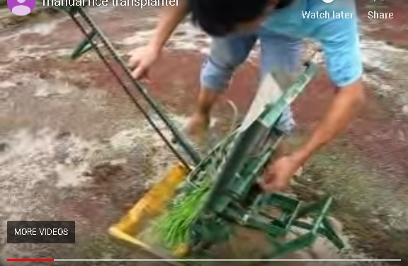 chines Rice planting machine