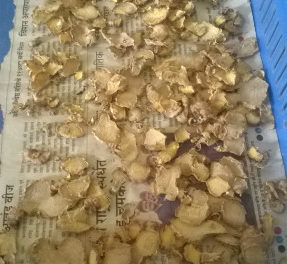 Experiment on drying ginger in Dome dryer