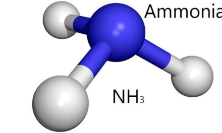 Estimation Of Ammonia In  Water.